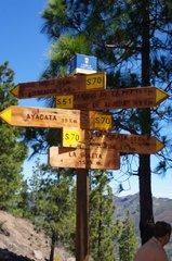 Куда б пойти,куда б податься?