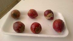 Опунции (плоды кактуса)