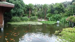 2 Loro Parque