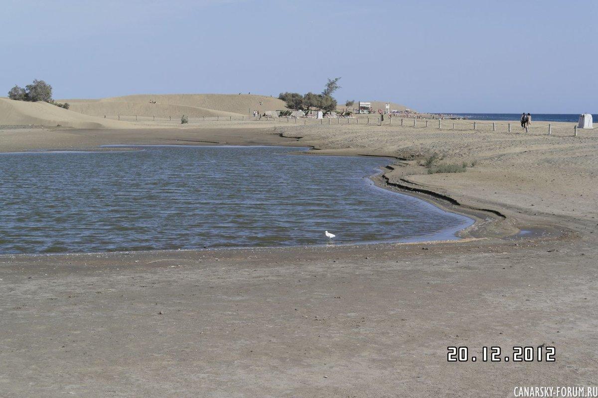 мелонерас пруд
