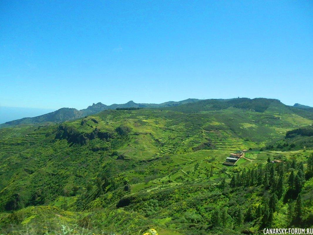 Зеленые склоны...