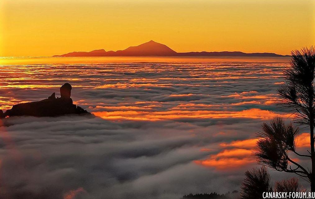 Две вершины. Скала в облаках(Roque Nublo) и соседний Teide