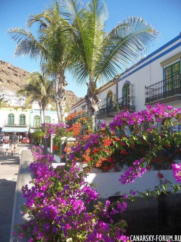 Puerto De Mogan Canarsky Forum6