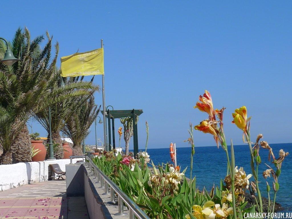 21 Playa De Ojos De Garza