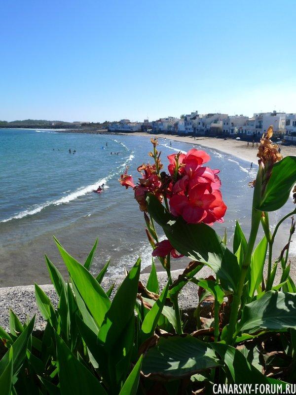 22 Playa De Ojos De Garza