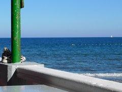 77 Playa De Ojos De Garza