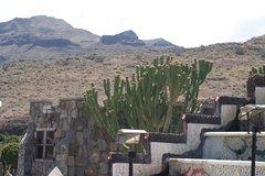 Тематический парк – мир кактусов Cactualdea (Гран Канария)25