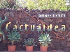 Тематический парк – мир кактусов Cactualdea (Гран Канария)11