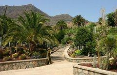 Тематический парк – мир кактусов Cactualdea (Гран Канария)5