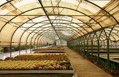 Тематический парк – мир кактусов Cactualdea (Гран Канария)6