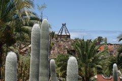 Тематический парк – мир кактусов Cactualdea (Гран Канария)23