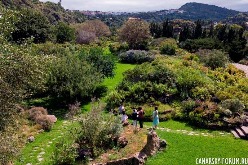 Ботанический сад Хардин Канарио (Jardin Canario)