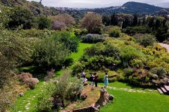 Ботанический сад Хардин Канарио 2