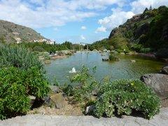 Ботанический сад Хардин Канарио 4