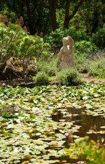 Ботанический сад Хардин Канарио 9