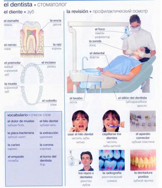 стоматолог.jpg