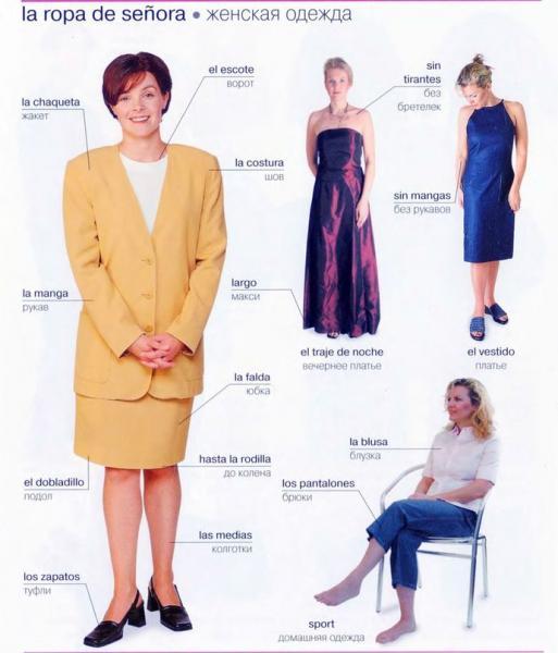 женская одежда.jpg
