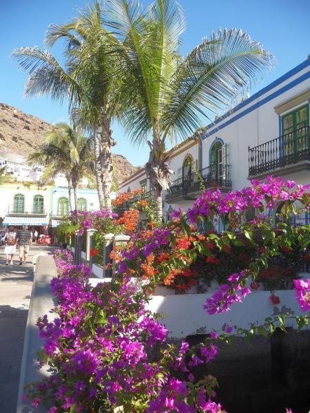 Puerto_de_Mogan-Canarsky-Forum6.jpg