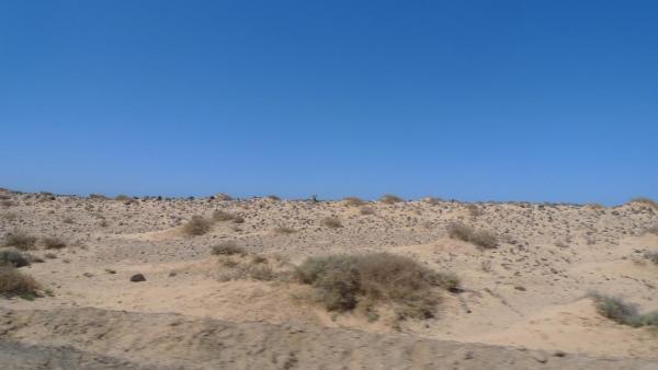 Punta de Jandía8.JPG