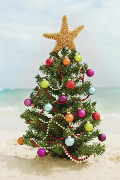christmas-tree-beach2.jpg