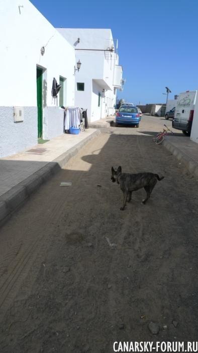 66_Punta De Jandía.JPG