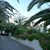 Tenerife_Las Americas5.JPG
